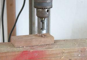 Cut walnut plugs and glue them