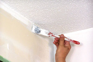 First, cut in the wall edges with a brush to facilitate better coverage with a roller.