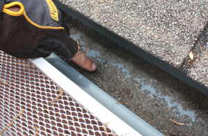Excessive mineral granules in the gutter can be an indication of wear on asphalt roof shingles.