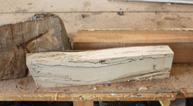 Shown is a piece of spalted maple the author discovered in a firewood pile.