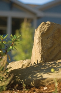 When positioning a rock, pay attention to how it will catch the morning or afternoon sun.