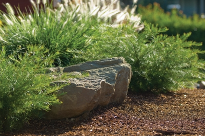 Landscape With A Boulder Approach Extreme How To
