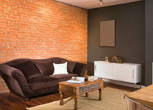 ling paint is a symptom of moisture trapped between the brick and. Black Bedroom Furniture Sets. Home Design Ideas