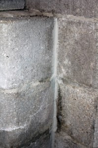 Joints between walls and walls and floor can also be patched with hydraulic cement.