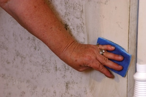 The product is extremely easy to use, simply mix according to manufacturer's instructions, spray on and wipe off.