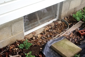 Water can also collect around and wash into window wells. Keep window wells clean and free of debris. A foot layer of coarse rock also helps drainage.