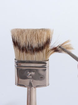 Professional quality, natural-bristle brushes may have a combination of badger, hog ear and skunk bristles.