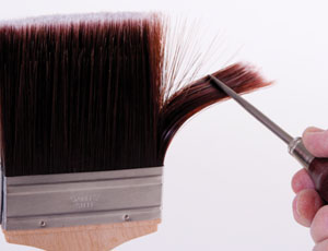 Nylon and polyester brush