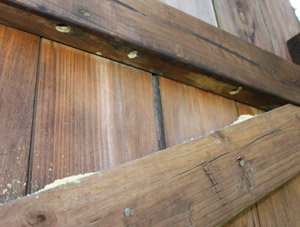 Inspect the structure thoroughly Repair Carpenter Bee Damage