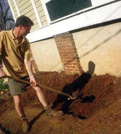 Loosen the soil