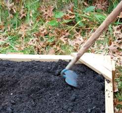 Finish soil spreading with hoe or rake.