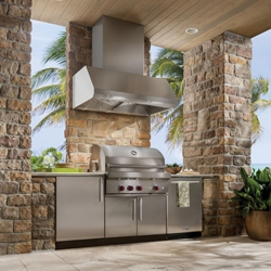BEST WPD39M Outdoor Range Hood