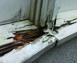 On some windows water intrusion had resulted in sills that were completely ruined by rot.