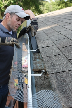 Clean gutters ensure proper drainage and help to prevent ice dams in cold climates.