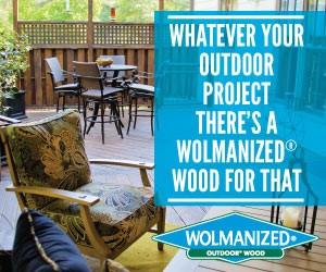 Wolmanized-2014-300x250