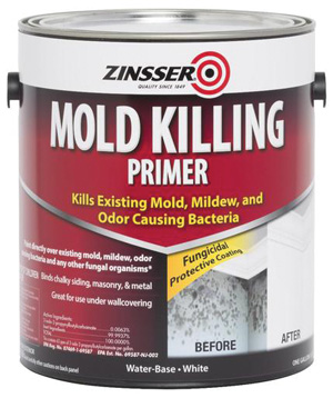 Fighting Mold In The Home Extreme How To