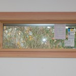 Adding Trim to Stain-Grade Wood Windows