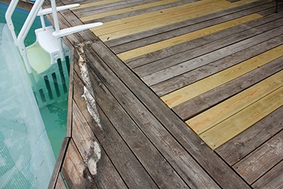 The rebuilt deck with old and new boards. Note the rot on the pool edges, these boards haven't been replaced yet.