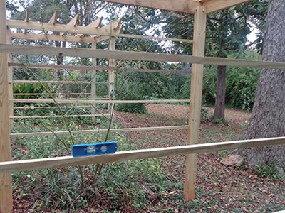 """The horizontal runners were ripped from 1x lumber into inch-thick strips and finish-nailed up the sides of the arbor every 12""""."""