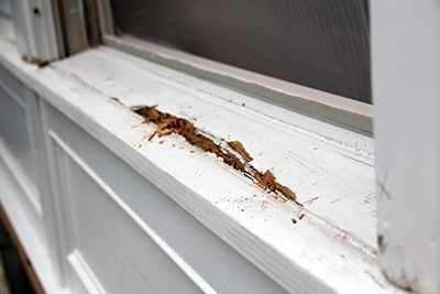 Rot that occurs deep inside of the sill is more difficult to repair.
