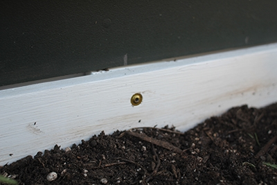 These window boxes were mounted with RSS Structural Screws from GRK Fasteners, which include a washer-style pan head for reliable holding power.