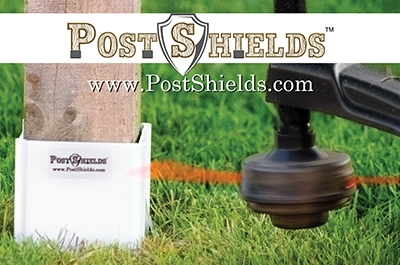 Post-Shields-Article-Picture