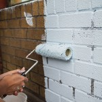 Pro Tips for Exterior House Painting