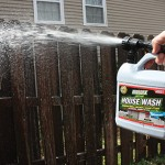 Fighting Mold and Mildew
