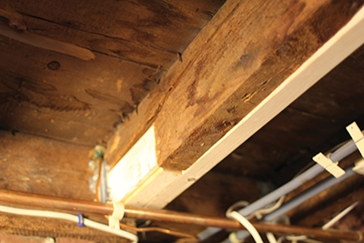 Fixing A Damaged Floor Joist Extreme How To View All