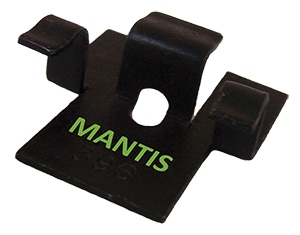 mantis-with-green-letters-no-background