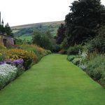 Pro Tips for Landscape Edging