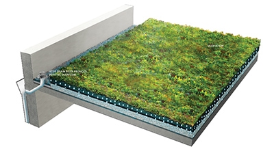 Create A Green Roof Extreme How To