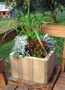 33200434140 planter5A Backyard Planters: Big & Small