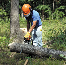 Chainsaws 101 - Extreme How To