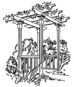 perg4 Building a Red Cedar Pergola