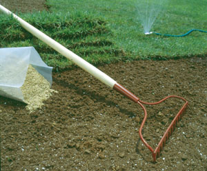 Revitalize a Dormant Lawn - Extreme How To
